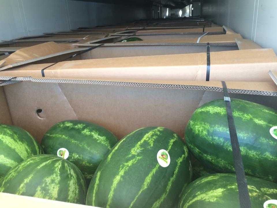 Αγορά Greek watermelons SAMANTHA DUMARA