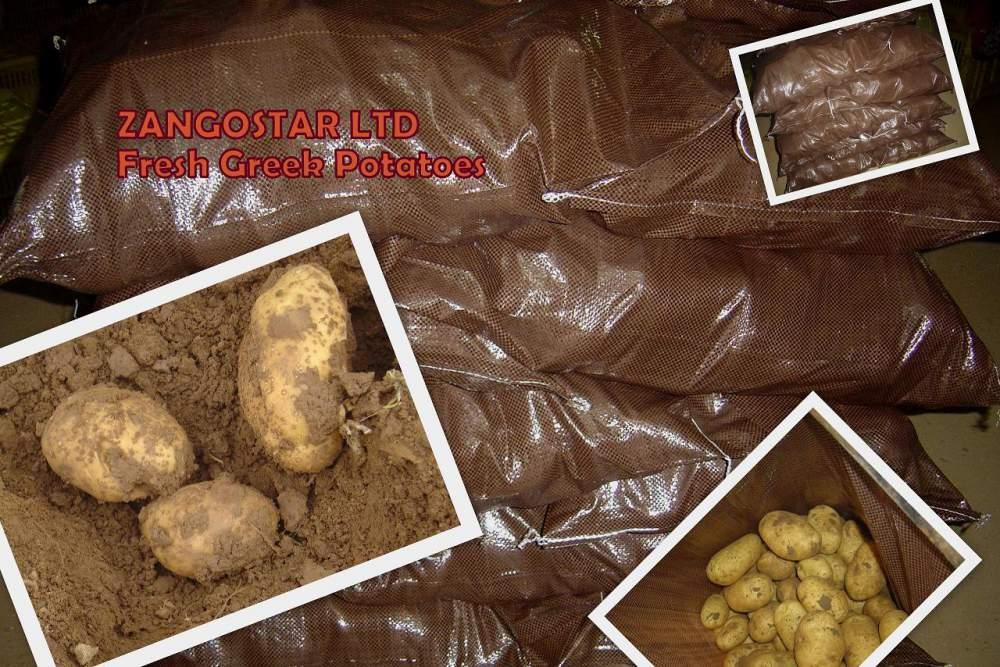 Αγορά Greek potatoes spunta