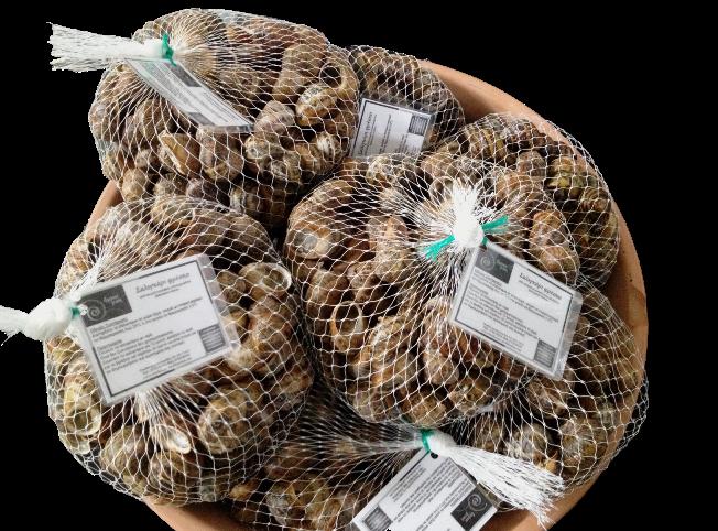 Αγορά Φρέσκα σαλιγκαρια/live snails