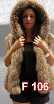 Crystal fox vest with hood