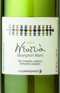 Αγορά Κρασι «Sauvignon Blanc» με έντονα φυτικά αρώματα