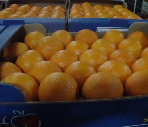 Αγορά Orange VALENCIA