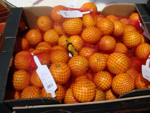 Αγορά Orange SALUSTIANA
