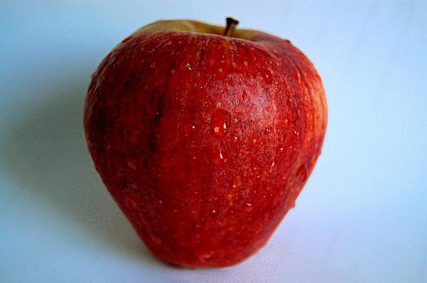 Αγορά Δέντρο μηλιά, Μηλοειδή