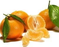 Αγορά Mandarins from Arta – Greece.
