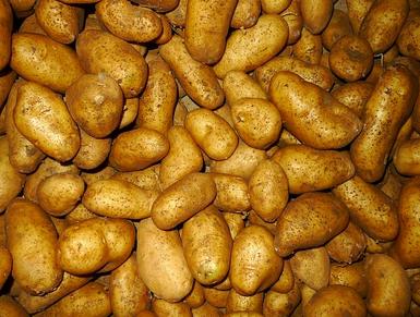 Αγορά Πατάτες, λάχανα οικολογικα