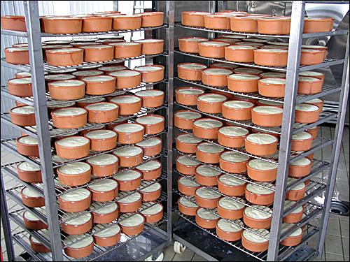 Αγορά Βούτυρο νωπό (τύπου Κερκύρας) και Βούτυρο γάλακτος