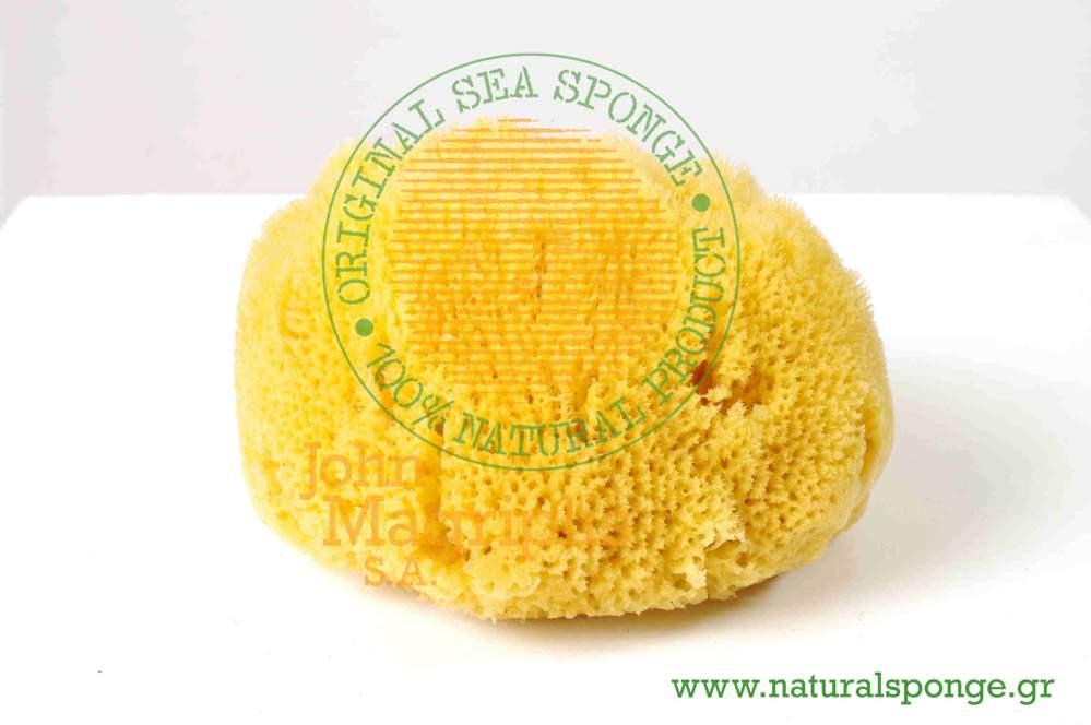 Αγορά Natural Sea Sponge Hard Type