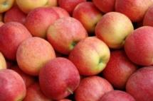 Αγορά Μηλα, ακτινιδια, μανταρινια, πορτοκαλια