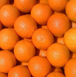 Αγορά Fresh oranges navel
