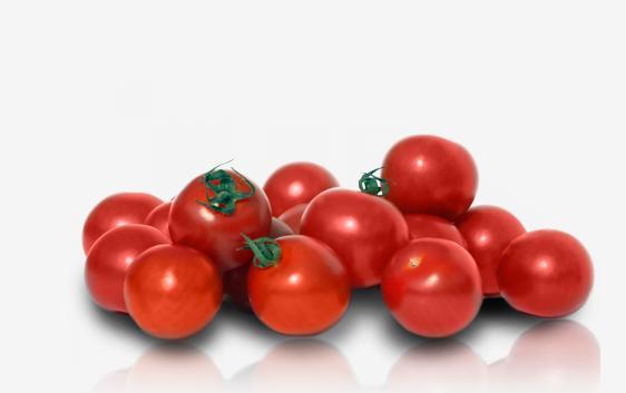 Αγορά Tomato Elpida, Matias, Mantona, Erani, Beladona and Sonato