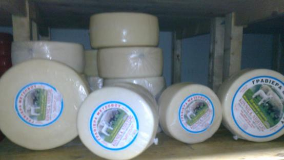 Semi-hard cheese Handmade traditional for export