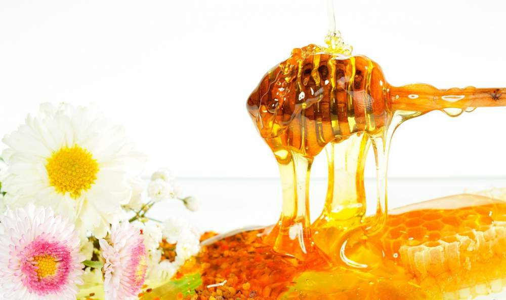 Αγορά Μέλι αγνό