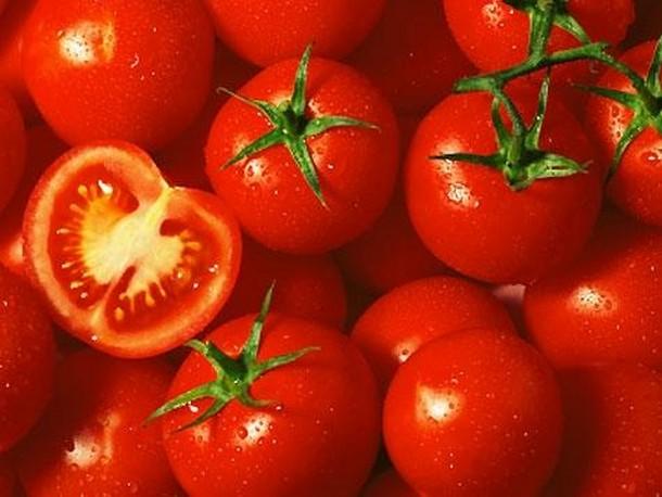 Αγορά Ελληνικές ντομάτες άριστης ποιότητας για εξαγωγή