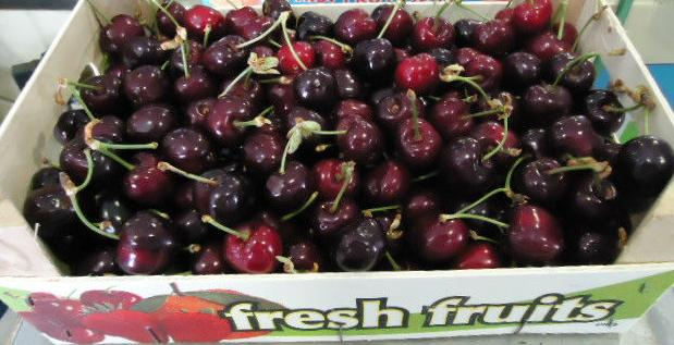 Αγορά Cherry Fresh for export from Greece