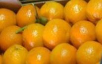 Αγορά Πορτοκάλια