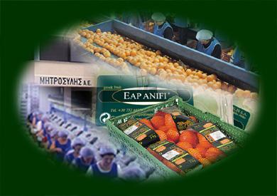 Αγορά Πορτοκάλια, λεμόνια, σταφυλιά