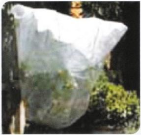 Αγορά Σακούλα προστασίας από πάγο