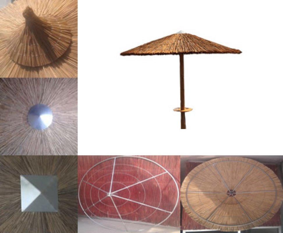 Buy Beach umbrellas