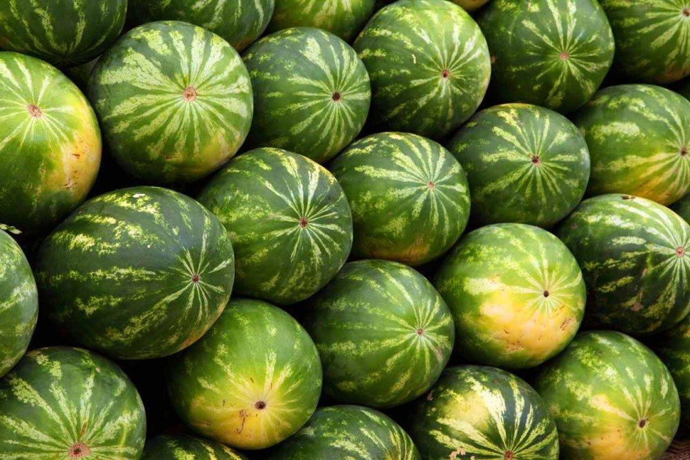 Αγορά Καρπούζια- Watermelons