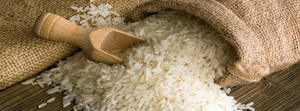 Αγορά Ρύζι καρολίνα