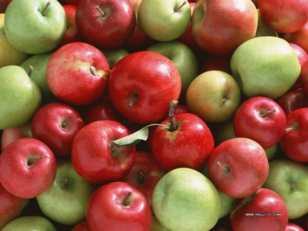 Μήλα υψηλής ποιότητας από ελληνικό παραγωγό