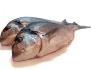 Αγορά Ψάρια Θαλασσινά