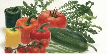 Αγορά Ντομάτες, τοματίνια cherry, αγγούρια, πιπεριές, μελιτζάνες και χορταρικά