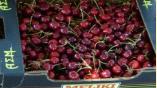 Αγορά Κεράσια νωπά σε όλες τις συσκευασίες