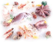 Αγορά Χταποδια , καλαμαρια, ξιφιας, γαλεος φετα, σολωμος, συναγριδα