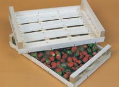 Κατασκευή κιβωτίων φρούτων