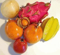 Εξωτικά φρούτα άριστης ποιότητας