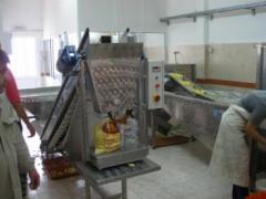 Γραμμή Διαλογής Ταξινόμησης Κομμένης Πατάτας