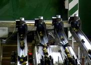 Γραμμές Διαλογής Ταξινόμησης Συσκευασίας Αχλαδιού