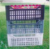 Παραγωγή Πλαστικών Κιβωτίων μίας χρήσης.