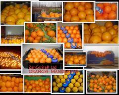 Greek oranges