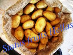 Potatoes Greek