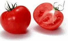 Τομάτες άριστης ποιότητας απο την Ελλάδα