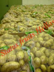 Ελληνικές πατάτες