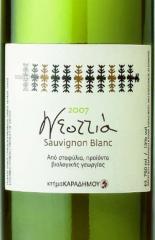 Κρασι «Sauvignon Blanc» με έντονα φυτικά αρώματα