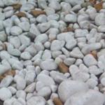 Βότσαλα Λευκό