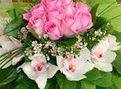 Μεγάλη ποικιλία λουλουδιών,