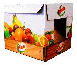 Συσκευασία νωπών φρούτων και λαχανικών