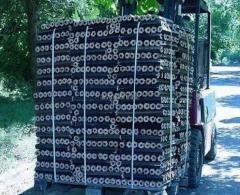 Briquettes combustible