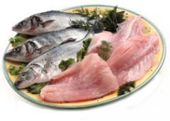 Κατεψυγμένα Ψάρια και Λαχανικά