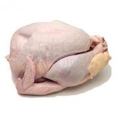 Κοτόπουλο Νωπά και κατεψυγμένα