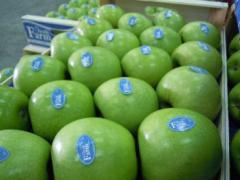 Μήλα Granny Smith υπέροχης ποιότητας