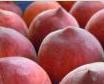 Φρούτο του καλοκαιριού Ροδάκινο