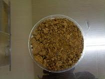 Ζωοτροφη απο ελαιοκραμβη (κραμβοπιττα)