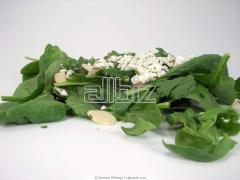 Σπανάκι άριστης γεύσης και ποιότητας